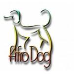 AFRO-DOG MILICZ Alicja Głębowska, strzyżenie psów, Milicz